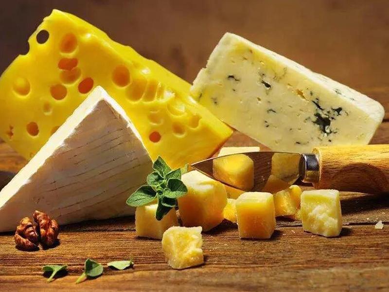 <em>MODULE 13</em>  Cheese Service